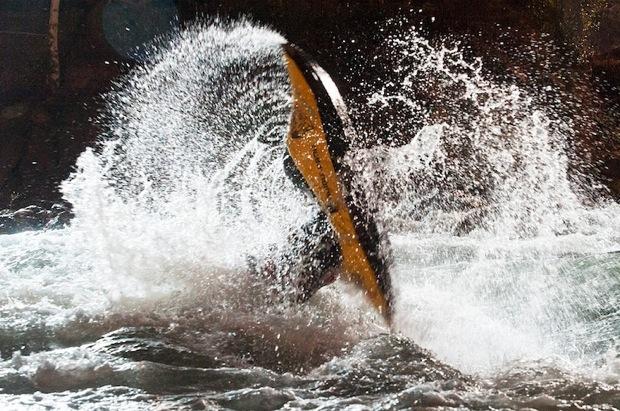 canoe kayak paddlesports world paddle awards golden spa sportscene freestyle